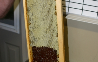 Honey from our own bees